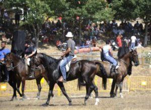 cabalo4